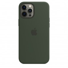 Чохол Apple iPhone 12 Pro Max Silicone Case - Cyprus Green (MHLC3)
