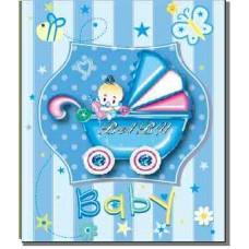 Альбом EVG 30sheet S29x32 Baby car blue